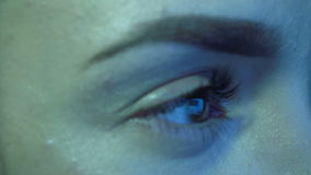 Ojo de la mujer en un monitor de computadora metrajes