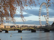 Ojo de Londres - invierno Londres - paseo en el parque de Londres Fotos de archivo