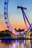 Ojo de Londres, Reino Unido. Fotos de archivo libres de regalías
