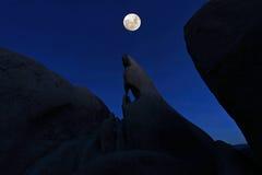 Ojo de los magos de la formación en Joshua Tree National Park Imagen de archivo