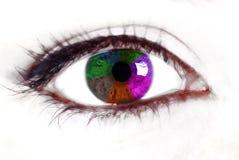 Ojo del arco iris Fotos de archivo libres de regalías