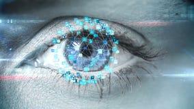 Ojo del centelleo con el interfaz de la tecnología almacen de video