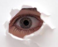 Ojo del espectador Fotos de archivo libres de regalías
