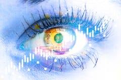 Ojo del euro de la mujer y del dinero Exposici?n doble Concepto de visi?n del negocio, dinero, ganancias imágenes de archivo libres de regalías