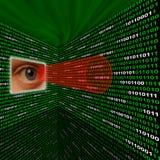 Ojo del Spyware que explora código binario Foto de archivo libre de regalías