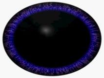 Ojo extranjero extraño El ojo animal con púrpura coloreó el iris, opinión del detalle en bulbo del ojo Movimiento del alumno libre illustration