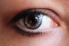 Ojo femenino con la lente de contacto gris tan cerca fotografía de archivo