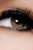 Ojo femenino hermoso con las pestañas largas extremas, maquillaje negro del trazador de líneas Maquillaje perfecto, latigazos lar foto de archivo