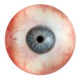 Ojo humano Fotos de archivo