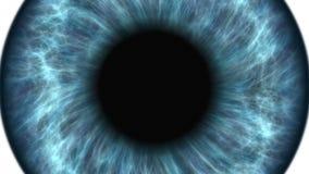Ojo humano azul que dilata y que contrata Primer extremo muy detallado del iris y del alumno metrajes