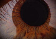 Ojo humano Tiroteo macro Imagenes de archivo