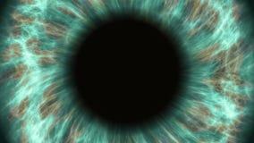 Ojo humano verde que dilata y que contrata Primer extremo muy detallado del iris y del alumno almacen de video