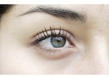 Ojo izquierdo Imagen de archivo libre de regalías