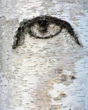 Ojo malvado de la madre naturaleza Foto de archivo