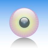 Ojo-Mire Foto de archivo libre de regalías