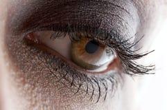 Ojo pardo hermoso con maquillaje Imagen de archivo libre de regalías