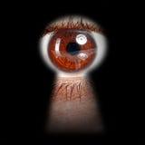 Ojo que mira a escondidas a través de un ojo de la cerradura Imágenes de archivo libres de regalías