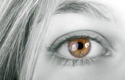Ojo rubio del amarillo de la mujer Fotografía de archivo libre de regalías