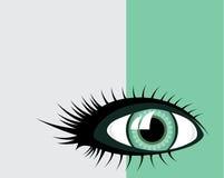 Ojo verde Imágenes de archivo libres de regalías