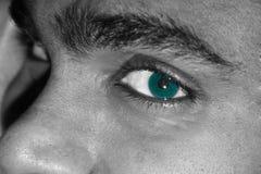 Ojo verde Fotografía de archivo