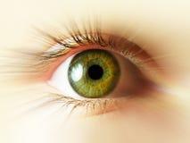 Ojo verde Fotos de archivo