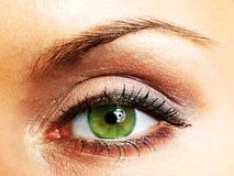 Ojo verde de la mujer imagen de archivo