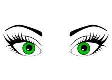 Ojo verde hermoso de la mujer de la web Vector ilustración del vector