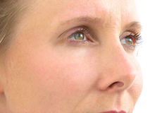 Ojos 01 del primer Imagen de archivo libre de regalías