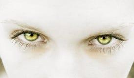 Ojos Foto de archivo