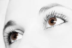 Ojos Fotografía de archivo libre de regalías