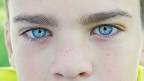 Ojos azules de un primer del muchacho almacen de metraje de vídeo