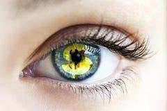 Ojos con la muestra de dólar preciosa Fotos de archivo libres de regalías