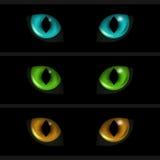 Ojos de gato en fondo negro Sistema de tres elementos Fotografía de archivo