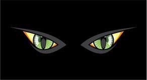 Ojos de gato en noche oscura Imágenes de archivo libres de regalías
