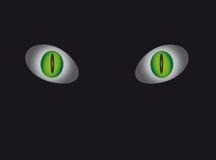 Ojos de gato mágicos en fondo negro. Imagenes de archivo