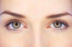 Ojos de la belleza Imagen de archivo libre de regalías