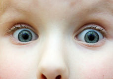 Ojos de la broma Imagen de archivo libre de regalías