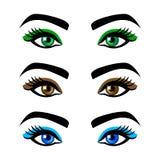 Ojos de la hembra de la colección y cejas de las formas, diversos colores, con sin maquillaje Foto de archivo libre de regalías
