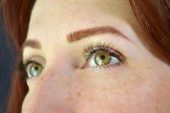 Ojos de la muchacha con el pelo rojo y ojos verdes con las pecas con extensiones de la pestaña en el fondo oscuro que mira para a imágenes de archivo libres de regalías