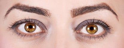 Ojos de la mujer Foto de archivo libre de regalías