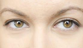 Ojos de la mujer foto de archivo