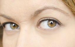 Ojos de la mujer fotografía de archivo libre de regalías