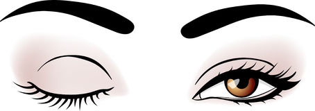 Ojos de la mujer del vector Foto de archivo