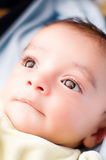 Ojos del bebé que miran para arriba Imagen de archivo libre de regalías