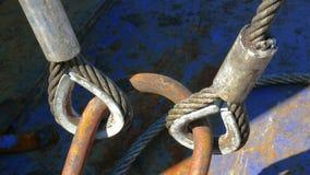 Ojos del cable de SWR. Imagen de archivo