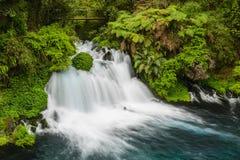 Ojos del Caburgua,智利瀑布  免版税图库摄影