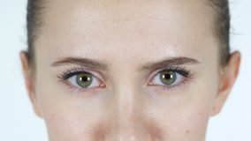 Ojos del centelleo de la chica joven almacen de video