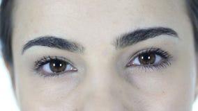 Ojos del centelleo de la mujer metrajes