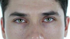 Ojos del centelleo del hombre metrajes