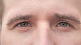 Ojos del centelleo del hombre casual de la barba metrajes
